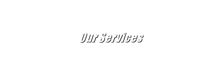 text-ourservices